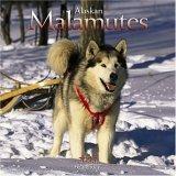 Alaskan Malamute Assistance League company